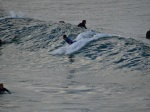 Cabarita Beach Surf 4